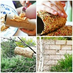do it yourself bird feeders