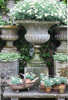 Horticultural Delights