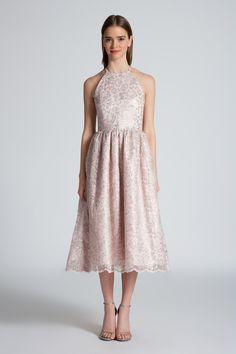 Blush Lurex Lace Alegria Dress