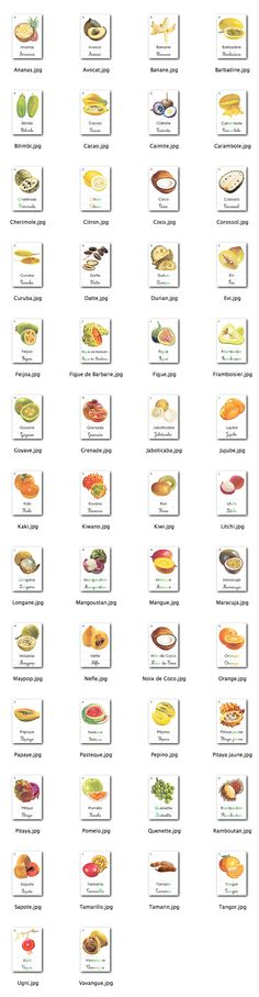 Tropical Fruit Flashcards in French French Teacher, Teaching French, Montessori Preschool, School Tool, Learn Chinese, Tropical Fruits, French Lessons, French Food, Learn French