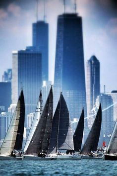 A perfect sport for Windy City > Illinois, USA.Sailboat races near Chicago Shore, Lake Michigan Catamaran, Lac Michigan, Magic Places, Sailboat Racing, Chicago Illinois, Chicago Lake, Chicago Usa, Chicago Poster, Chicago Travel