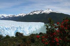 rio gallegos argentina | Blog from Rio Gallegos, Argentina | SCOTT FREE | Off Exploring