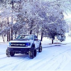 Ford Raptor, remodelled by Roush.