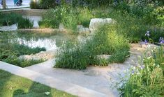 Time to Relect Garden. RHS Chelsea Flower Show 2014. Click to read article and to see plants list used.
