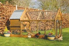 Chicken House With Run pictures