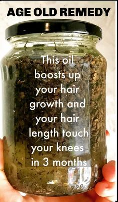 Curry Leaves Remedy To Get Strong And Long Hair haircare hairgrowth longhair stronghair diyhair naturalhaircare Extreme Hair Growth, Hair Growth Tips, Natural Hair Growth, Natural Hair Styles, Long Hair Styles, Hair Tips, Fast Hair Growth, Relaxed Hair Growth, Diy Hair Growth Oil