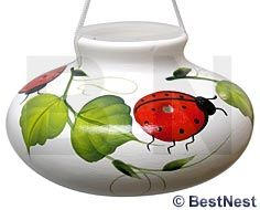Lone Wolf Ceramic Hummingbird Feeder, Ladybug, --- also available with flowers instead of the ladybug, in various colors Garden Coffee Table, Humming Bird Feeders, Lone Wolf, Garden Gifts, Hummingbirds, Ladybug, Outdoors, Ceramics, Colors