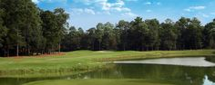 Rose Hill Golf Club, Bluffton, SC.  Been there, done that.