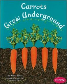 Carrots Grow Underground (How Fruits and Vegetables Grow): Mari Schuh, PhD, Gail Saunders-Smith: 9781429661850: Amazon.com: Books