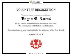 free certificate template by hloomcom - Template For Certificate Of Appreciation In Microsoft Word