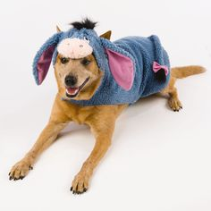 Dog Costumes  - TownandCountryMag.com