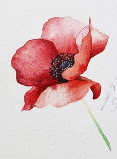 flower cards Diy Discover The post appeared first on Bestes Soziales Teilen. The post appeared first on Bestes Soziales Teilen. Watercolor Poppies, Watercolor Cards, Watercolour Painting, Painting & Drawing, Poppies Painting, Poppies Art, Watercolor Video, Red Poppies, Poppies Tattoo