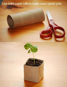 2.) Use toilet paper tubes as starter pots.