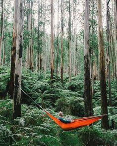 Chillin between giants Melbourne Australia   Sasha Juliard Say Yes To Adventure