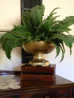 Large gold urn for floral displays. Can also be paired with large bowls to hold fruit, salad or other food items. A small bowl placed in the bottom with ice will keep items cold for serving!