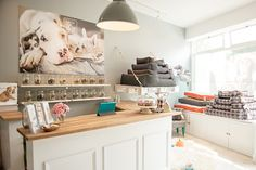American-style dog shop in SW London, Little & Large