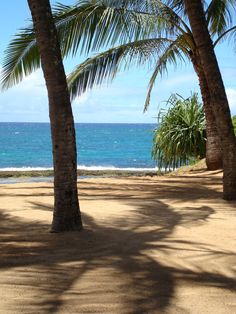 Maui, Hawaii. My favorite island in the mid Southern Pacific...