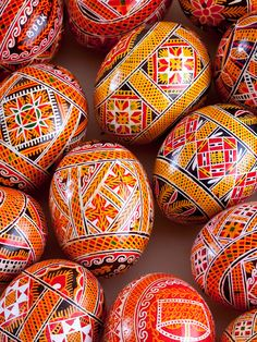 Pysanka Chicken Egg Ukrainian Art Form.  Pysanky eggs.
