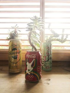 Create Tin Can Plant Holders