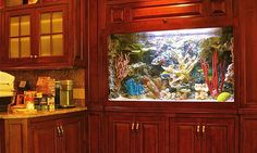 built in fish tank