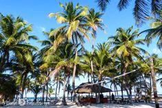 Backpacking in Mexiko: Guide für die Yucatán Halbinsel mit Route, persönlichen Reisetipps zu Sehenswürdigkeiten, Unterkunft und Transport