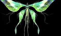 Dark Souls OST - Moonlight Butterfly/Dark Sun Gwyndolin