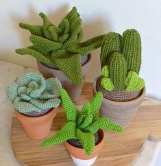 Cactus XL par C hokoa sur Etsy Crochet Diy, Cactus En Crochet, Art Au Crochet, Crochet Home, Crochet Dolls, Crochet Leaf Patterns, Crochet Leaves, Crochet Designs, Crochet Flowers