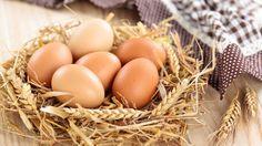 Uova, ricetta con le uova, ricetta brownies americani, cucina americana, dolci