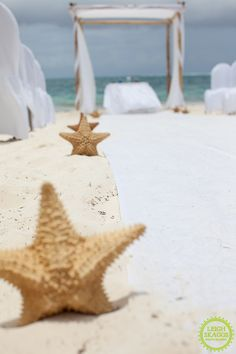 starfish aisle decor