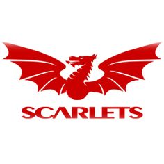 The Scarlets are one of the four professional Welsh regional rugby union teams. Based in Llanelli, south-west Wales the team play at the Parc y Scarlets stadium