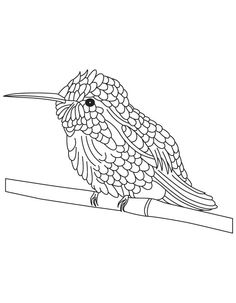 hummingbird coloring pages | Follow Your Heart....: NEW STAMP LINE ...