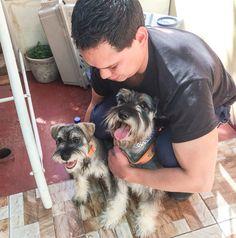 My babies!!! 🙈 i love them!! 💟💟💟🐶🐶🐶#schnawzer #doglover #family #boyfriend