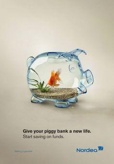 Funny Pig Fish Bowl- too cute This Little Piggy, Little Pigs, Aquarium Original, Cool Fish Tanks, Funny Commercials, Funny Pigs, Cute Fish, Cute Piggies, Cute Photography