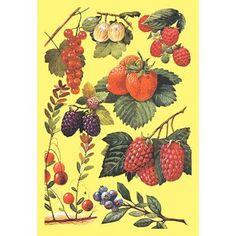 Buyenlarge Berries Painting Print