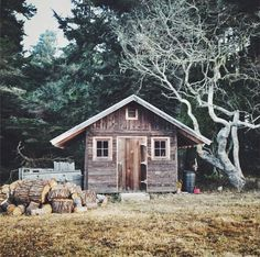 .this looks like a pretty, charming rustic little vacation cabin with lovely trees all around.  makes me think about the fun of going on vacation and staying in cabins or camping or hotels - each with their own charms.