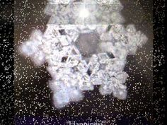 Dr. Masaru Emoto's Water Experiment: Words Are Powerful