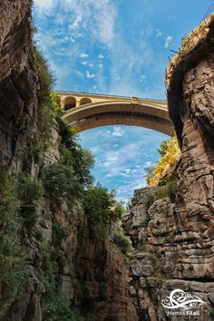 Under the Bridge - Constantine by Hamza Filali (The Sidi Rached bridge spans the mouth of the deep Rhumel River gorge in the terrace filled city of Constantine, Algeria.)