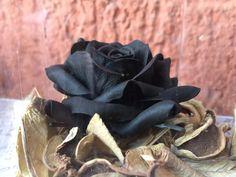 rosa creata con la porcellana trasparent<3