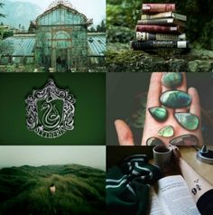 Pisces INFP Slytherin