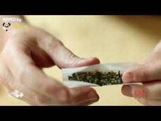 大麻不是什麼新鮮的玩意兒,這點無庸置疑。人類幾乎自存在以來就開始使用大麻了。…