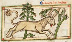 Animal detail from medieval illuminated manuscript, British Library Harley MS 3244, 1236-c 1250, f38r