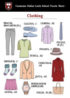 """CarmentaLatinSchool on Twitter: """"Click the circular book icon to download Carmenta's """"Clothing"""" #Latin picture vocab sheet https://t.co/L2CcMwRPNo https://t.co/gXP91epNHv"""""""