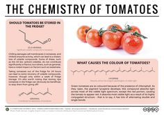 To Refrigerate, Or Not To Refrigerate? – The Chemistry of Tomatoes