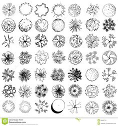 Set Treetop Symbols Architectural Landscape Design Black White