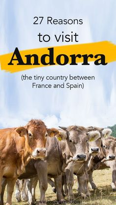 27 Reasons to visit Andorra (a tiny country between France and Spain) European Destination, European Travel, Visit Andorra, Barcelona Day Trips, Backpacking For Beginners, Rando, France Travel, Travel Europe, Spain Travel