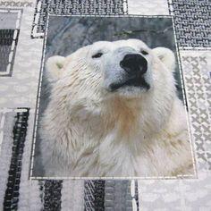 Stoff Tiermotive - Stoff Baumwolle Eisbär Fotodruck weiß grau Digital - ein Designerstück von werthers-stoffe bei DaWanda