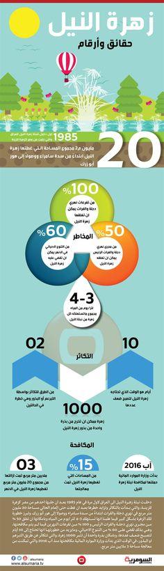 بالانفوغراف: آفة بحاجة لمكافحة.. 20 مليون م2 تغطيها زهرة النيل