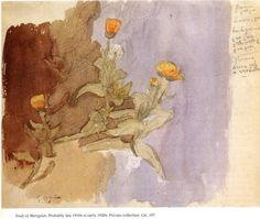 Study of Marigolds Gwen John, 1918 Botanical Illustration, Illustration Art, Illustrations, Gwen John, Mary John, Beautiful Flower Drawings, Beautiful Flowers, Murakami Flower, Watercolor Journal