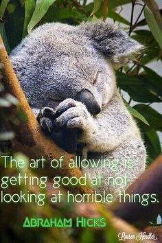 Abraham Hicks - The art of allowing is getting good at not looking at horrible things