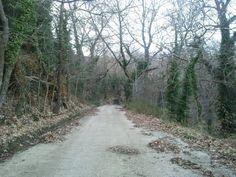 #bozika Greece, Country Roads, Grease